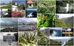 Partir à l'ile de la Réunion